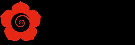 Aïkido Adultes